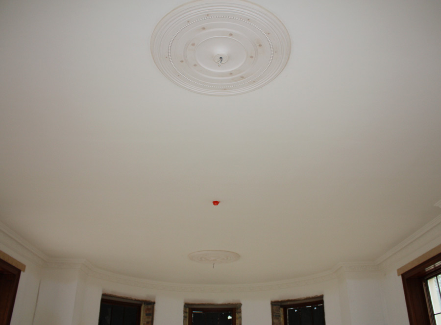 fixed-ceiling-roses-with-enrichments